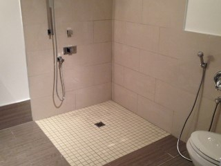 Bathroom Renovation with Open Shower